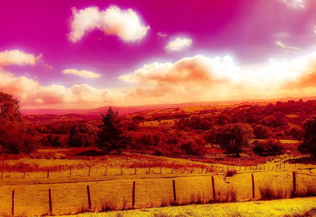 Landscape Fence Tranquil Scene Sky Scenics Cloud Beauty In Nature Field Remote Cloud - Sky Nature Outdoors Non-urban Scene Multi Colored Countryside Cloudy Nikond3300 Nikonphotography Nikonphotographer Nikon Eeyem Eeyem Photography EeYem Best Shots Eeyemgallery EeyemBestPhotography