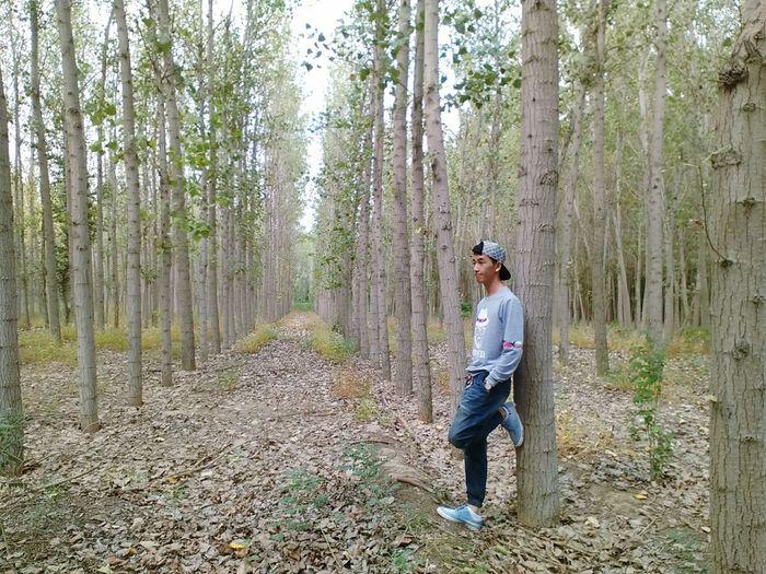 blue boy woods