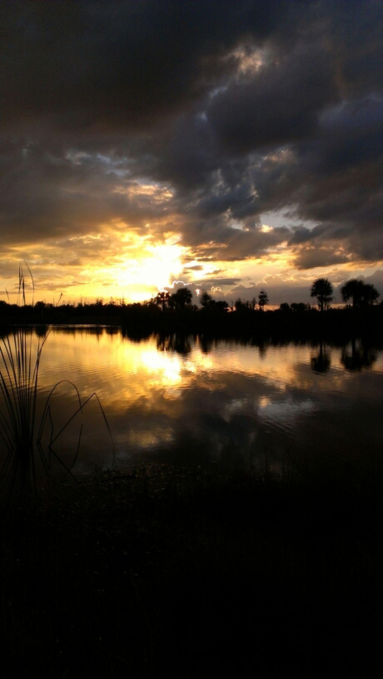 Sunset Florida HTC EVO 4g Lte