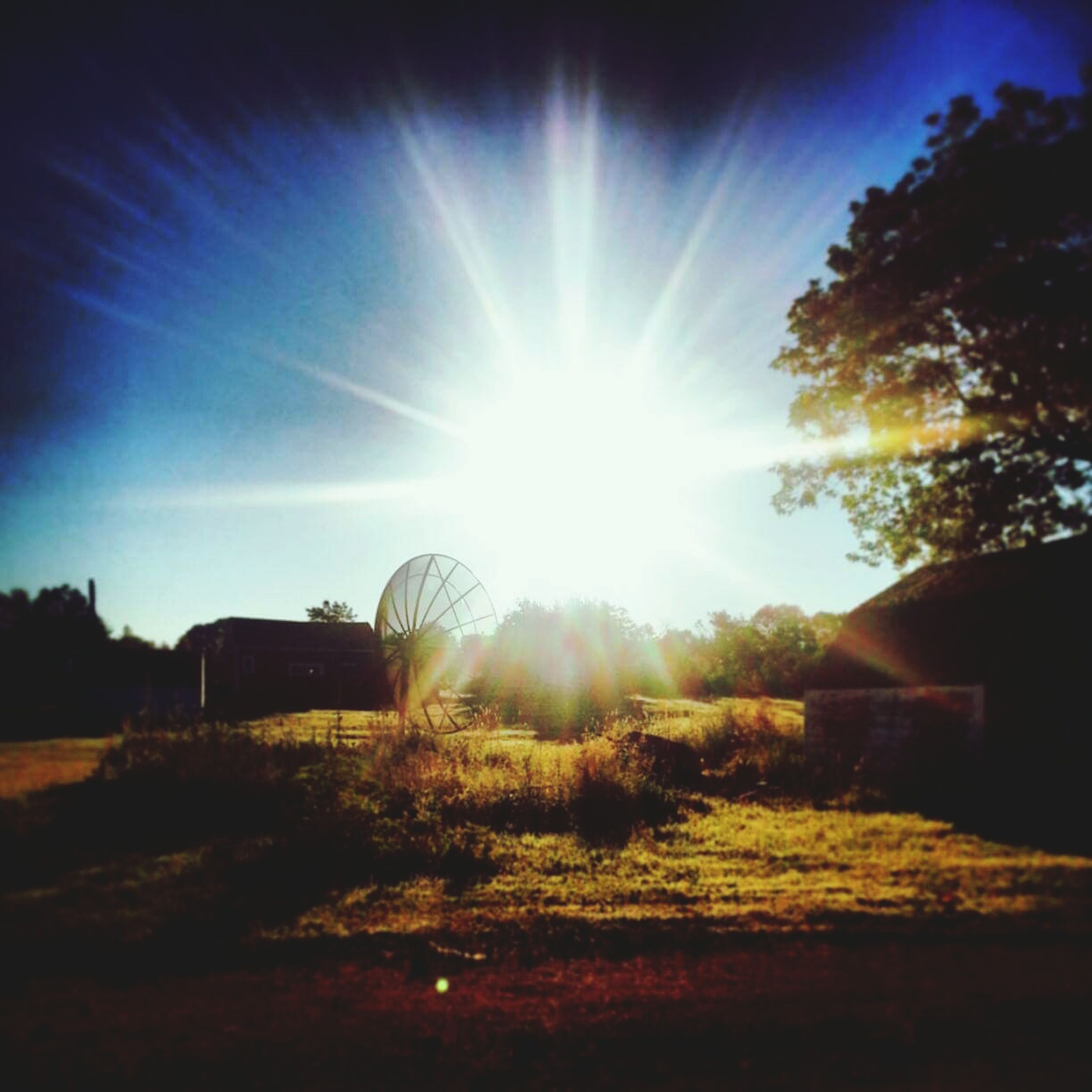 sun, sunbeam, sunlight, lens flare, tree, sky, sunny, built structure, bright, architecture, building exterior, nature, tranquility, landscape, field, shining, day, tranquil scene, house, blue