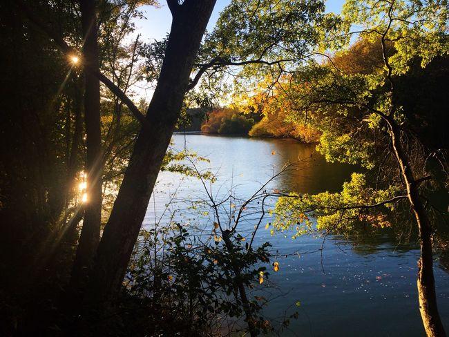 River at sunset Sunset River