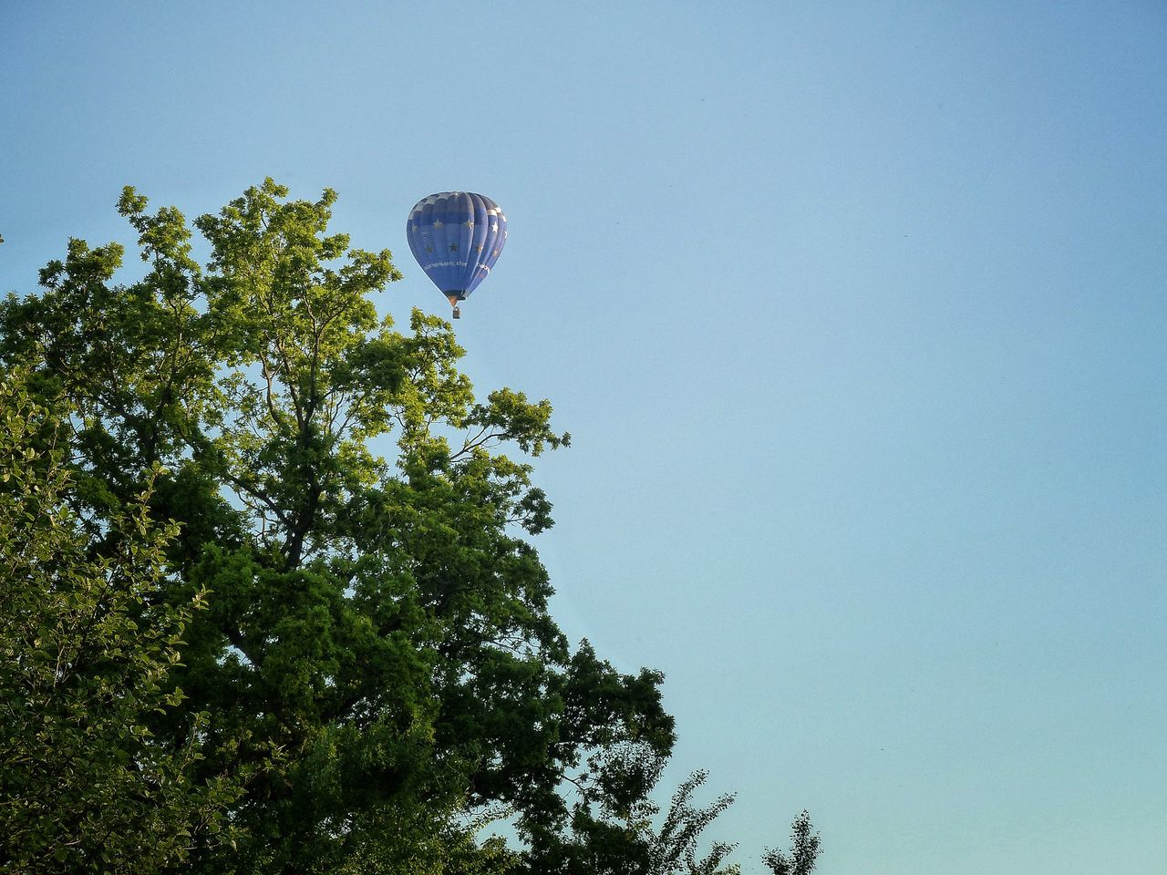 Hot Air Balloons Clear Sky Flying Flying High Day Outdoors Year Cycle Outdoors Photograpghy  From My Point Of View Beautiful Day Eyeem Photography Live For The Story Adventure Tree Trees And Sky