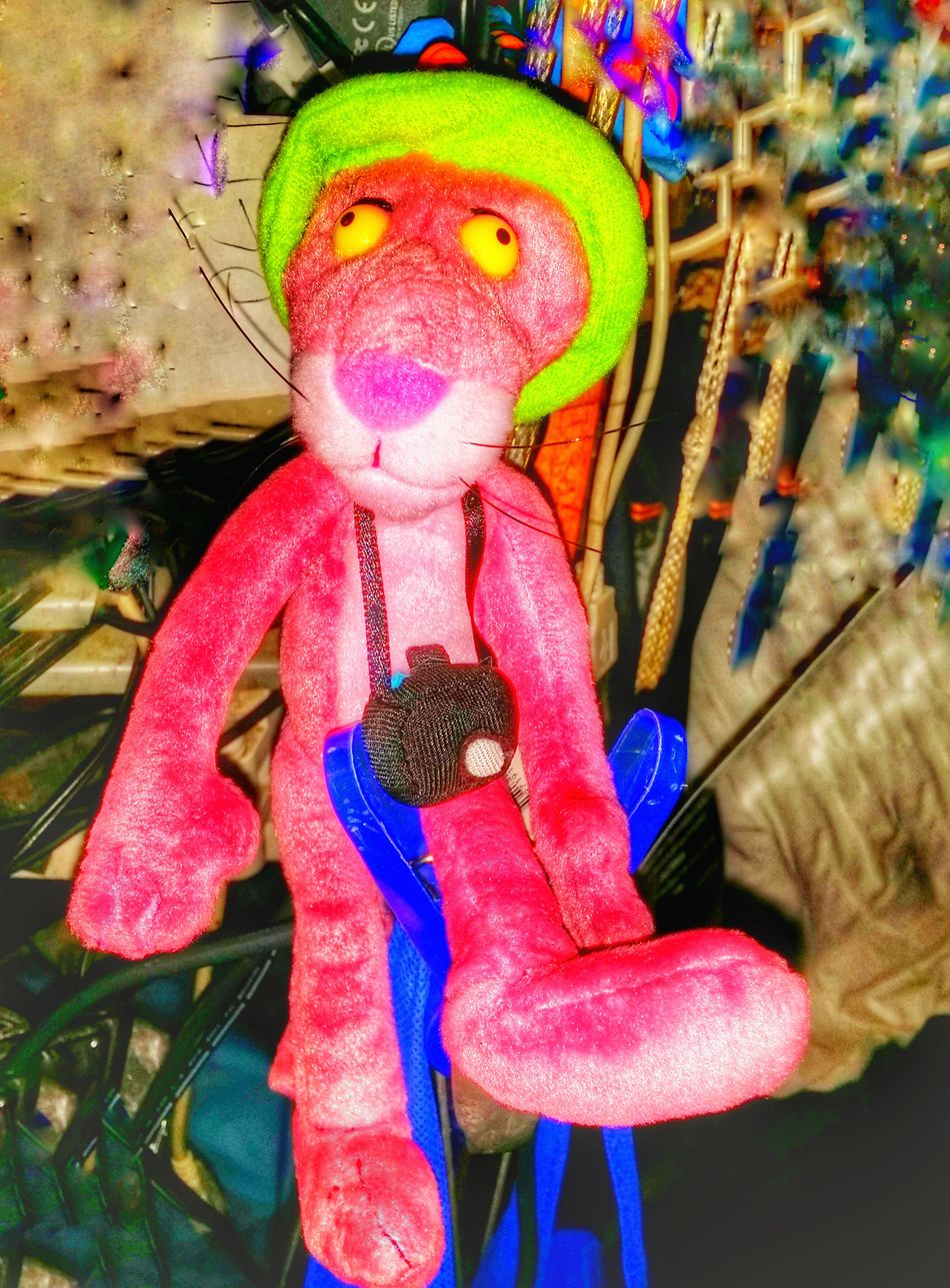 My new travel buddies For The Love Of Photography Share What You Love Special Effects Life Is A Journey Share A Photograph Pink's On A Journey Pink Panther On The Road Camera Pink Panther