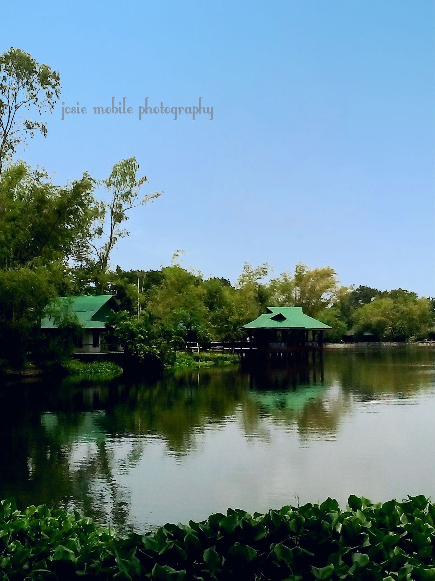 The Calmness Within Eyeem Philippines Mobilephotography Taking Photos EyeEm Landscape Scenery Shots Landscapes