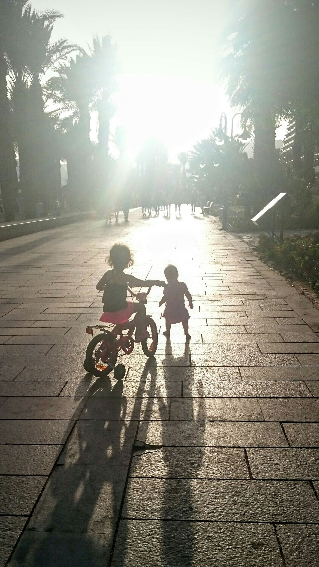 Beautiful stock photos of bike, Bicycle, Childhood, Children, Day
