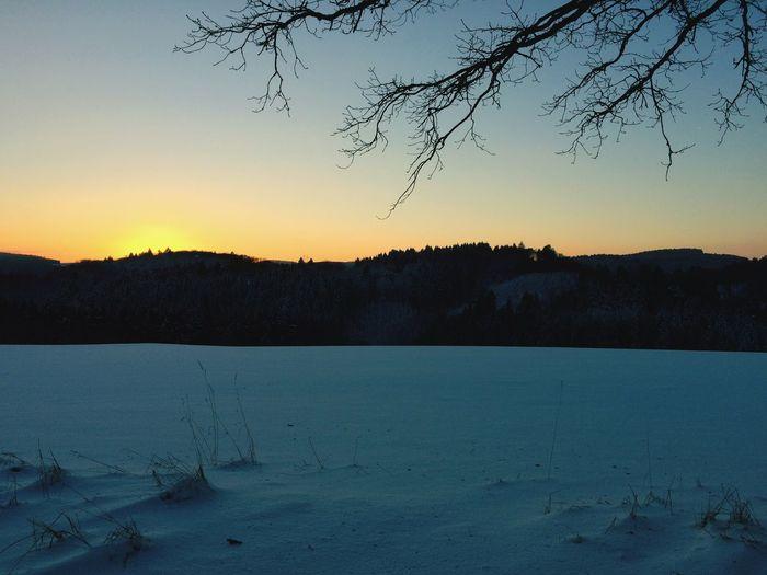 Winter Snow Sunset Cold Temperature Sky Tree Nature Landscape Frozen
