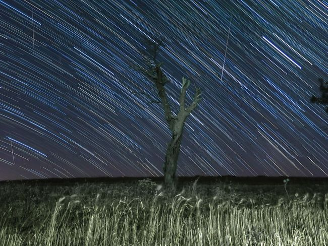Beautiful Perseus meteor shower last night. Astronomy Astrophotography Beauty In Nature Earth Hello World Hot Look Landscape Long Exposure Long Exposure Night Photography Long Exposure Shot Meteor Meteor Shower Nightphotography Nightscape Nightsky Outdoors Perseus Perseus Meteor Sho Shower Stars Startrails Travel Photography Tree Perseid Meteor Shower Perseids Meteor Shower
