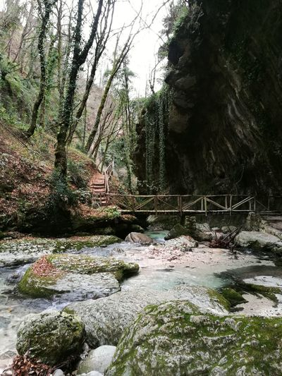 Grass Green Color Waterfall Drop Park Rock Rock Formations EyeEm Nature Lover EyeEm Best Shots Check This Out EyeEmBestPics Bridge - Man Made Structure Wood Forest Italian River Beauty In Nature