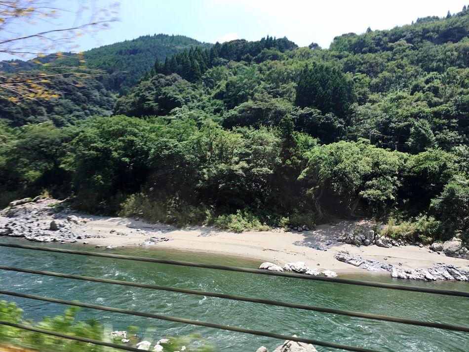 球磨川沿いをゆく(「・ω・)「 River Riverside Beautiful Nature Tree Trees Ontheroad Driving