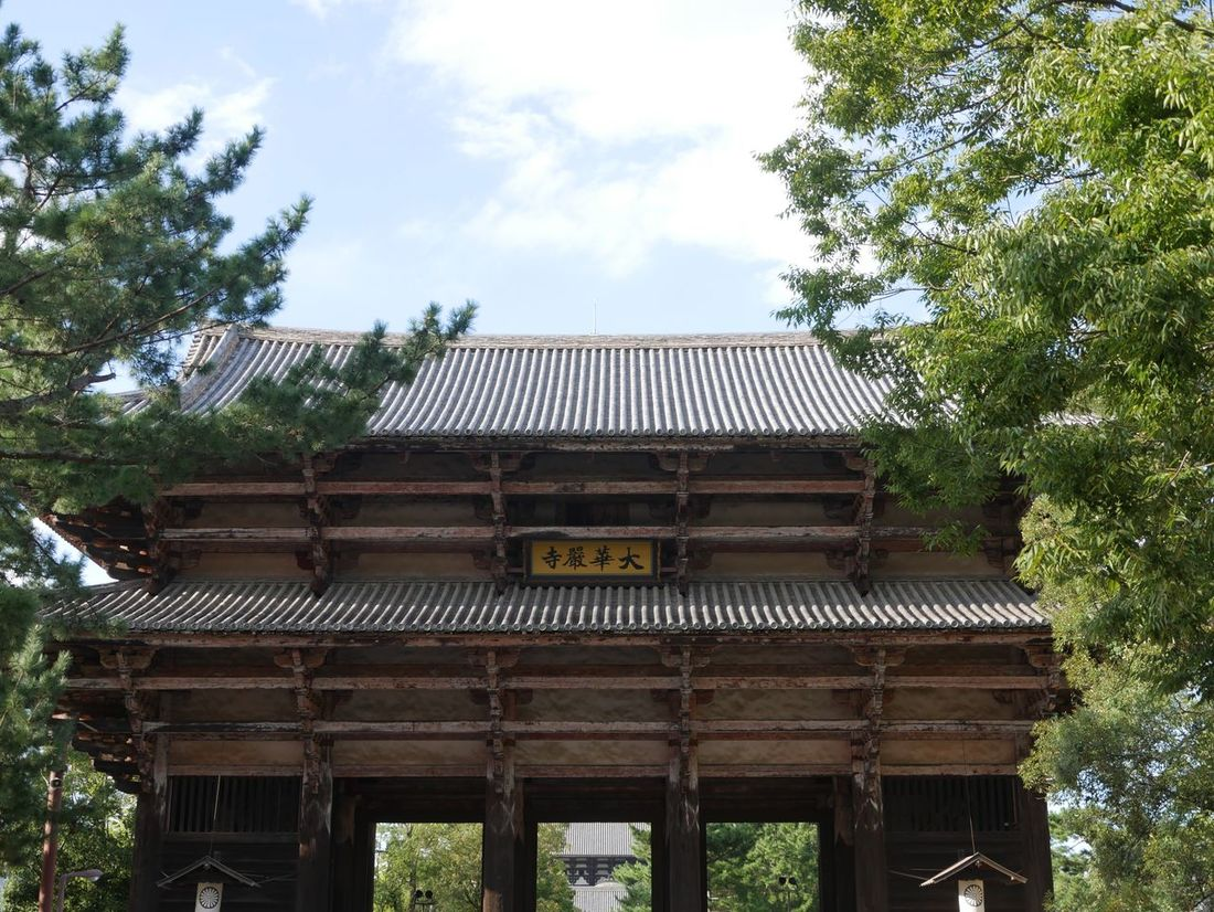 Architecture Built Structure Tree Low Angle View Day Building Exterior Roof No People Outdoors Sky Growth Nara,Japan Toudaiji