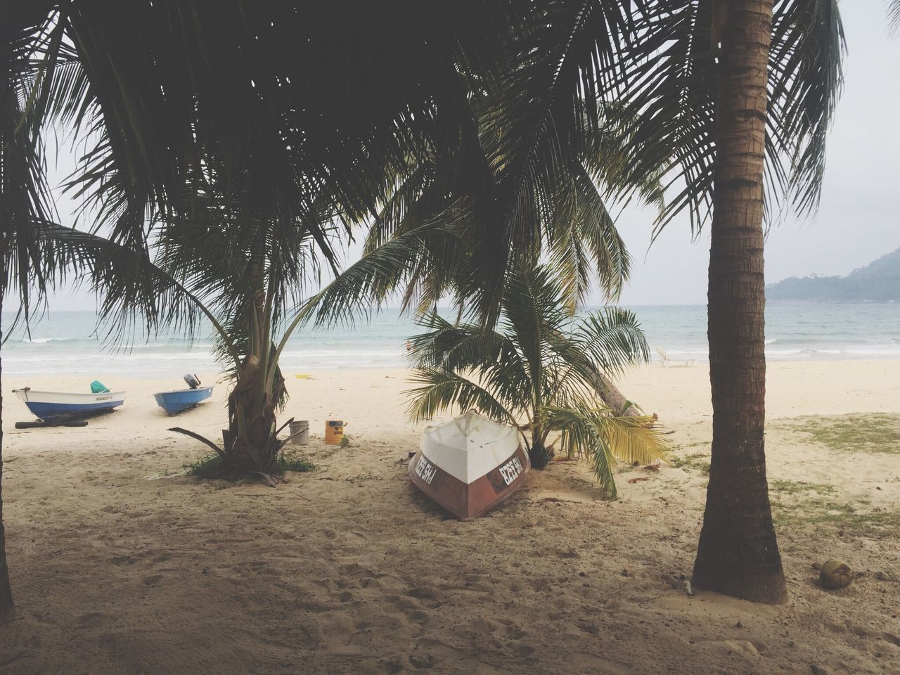 Paradise Beach Paradise Tropical Weather Juara Beach Tropical Island Tioman Tropical Paradise Nature At Its Best Travel Destinations Lost Beach Paradise Island Boat Places To See Before You Die Beachphotography Travel Photography Palm