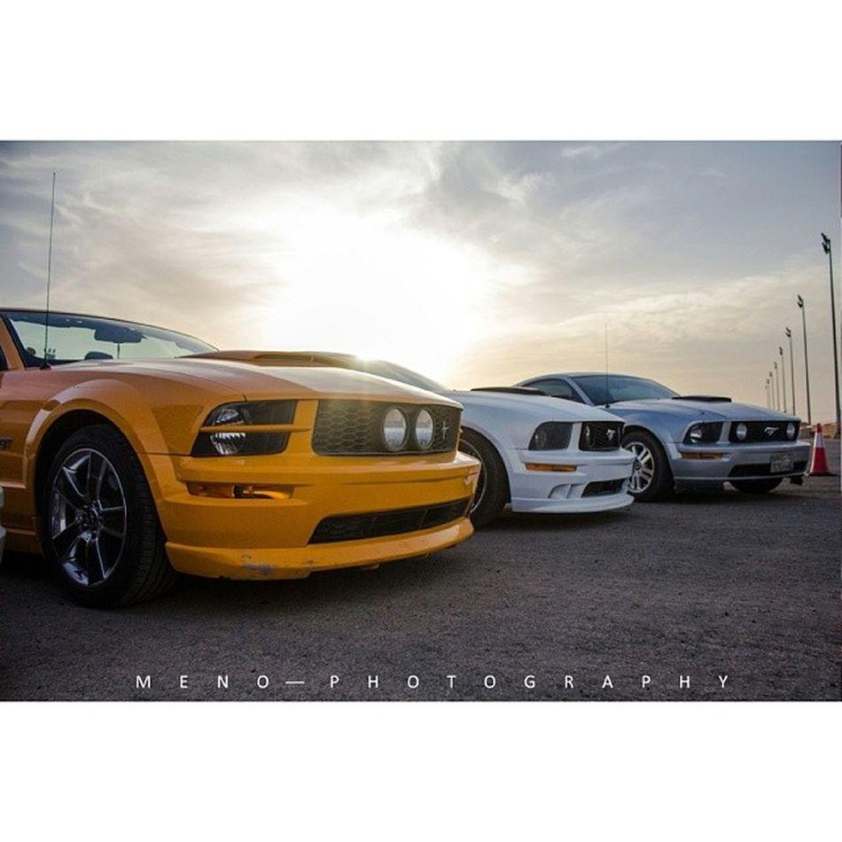 نادي_موستانج_السعودية  نادي_موستينق_السعودية Mustang_ksa Mustang | mustanggt | coupe | stang | cobra | 50H | Fast | AmericanMuscle | KSA | SaudiArabia | GT | ford | Racing | Mustangfame | Mustangfanclub | fastcar | shelby | fastford | mach1 | DragRacing | mustangpage | Aljazirahford | club | mustang_fan_page101 | real_speed | mustang_fame_page