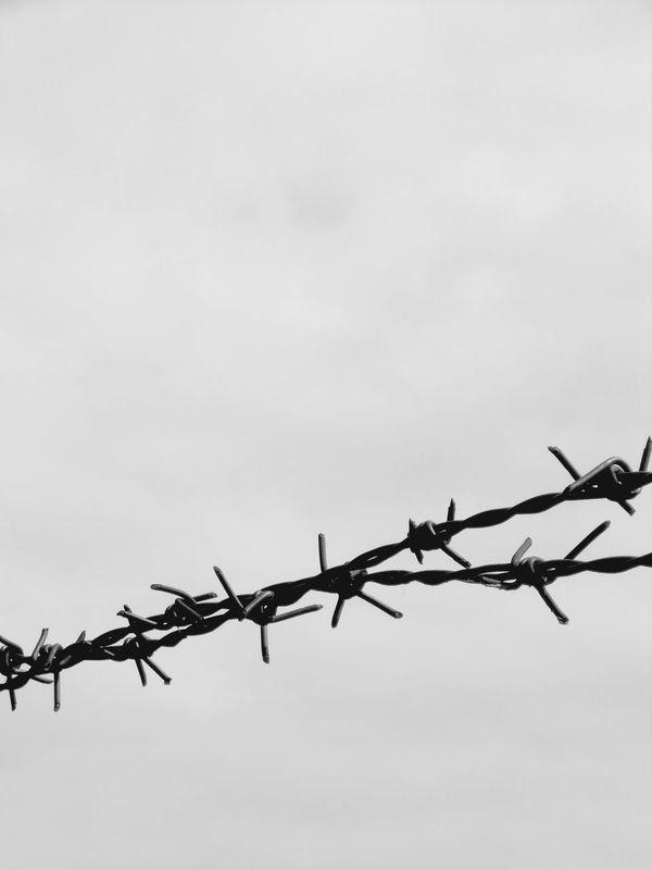 Barbed Wire Gray Black Blue Sky Background Textures And Surfaces ArchiTexture Fence Metal Wire Pain