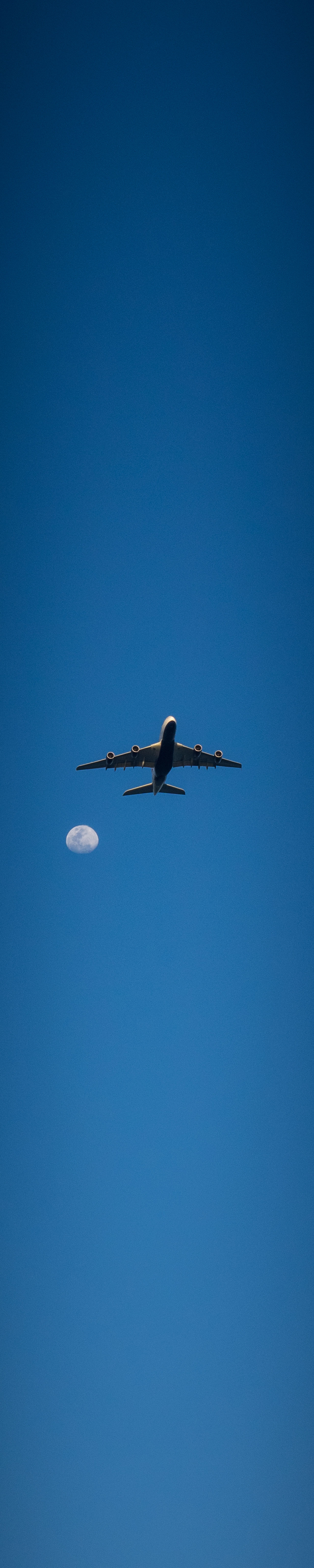 Fly me to the Moon Air Airplane Blue Clear Sky Day Fly Me To The Moon Flying Low Angle View Moon Moonlight Plane Sky Transportation Wings