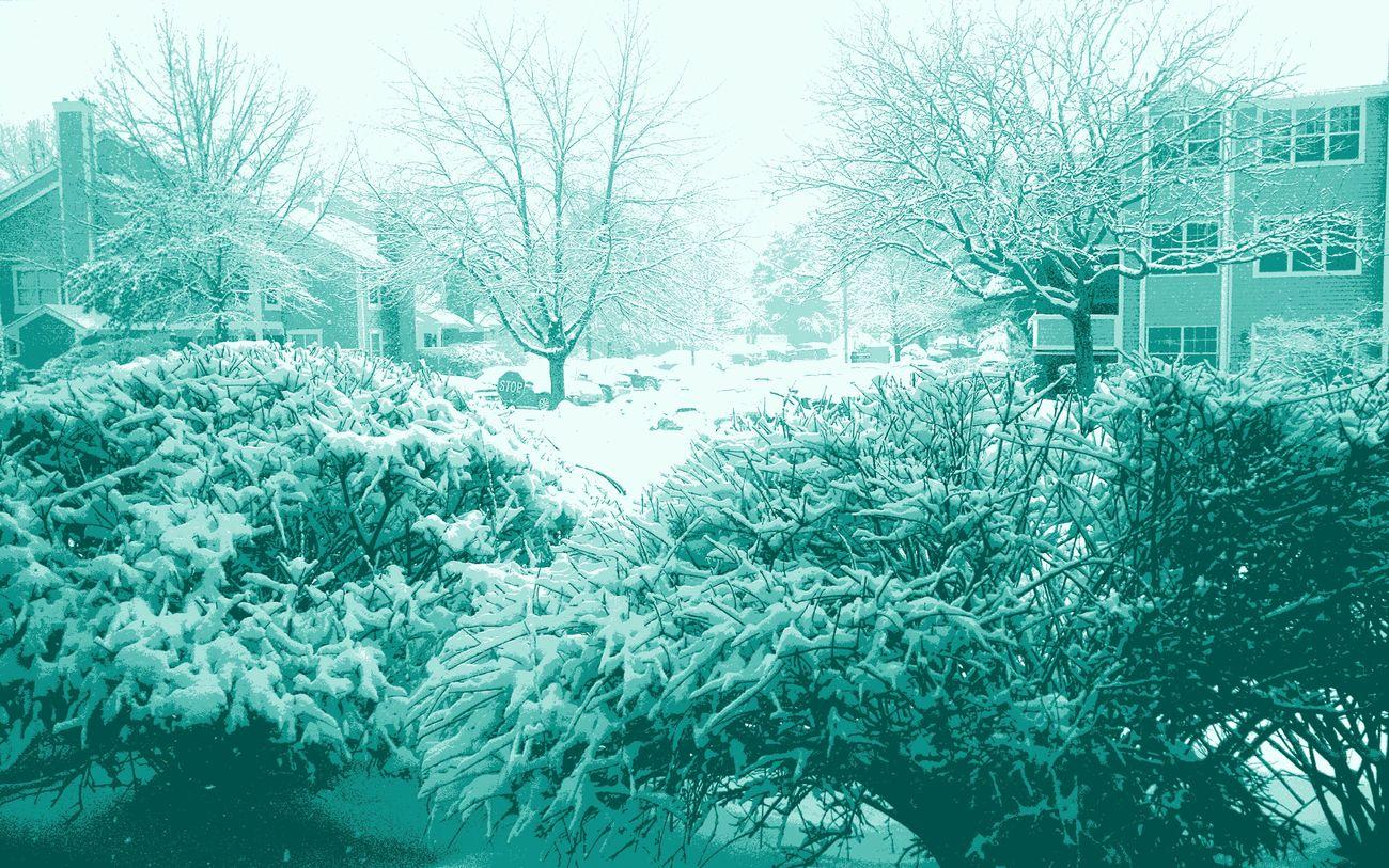 Snow ❄ White Blanket I Love Winter Peaceful