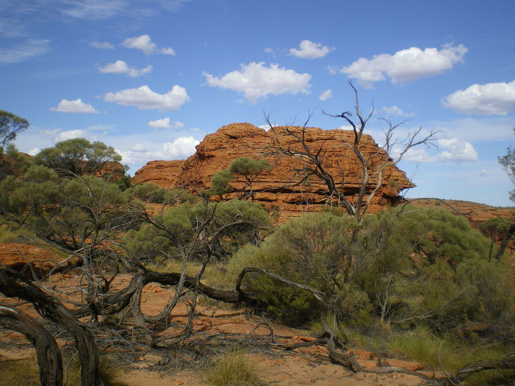Australia Beauty In Nature Canyon Kings Canyon Landscape Nature Northern Territory Rock Formation