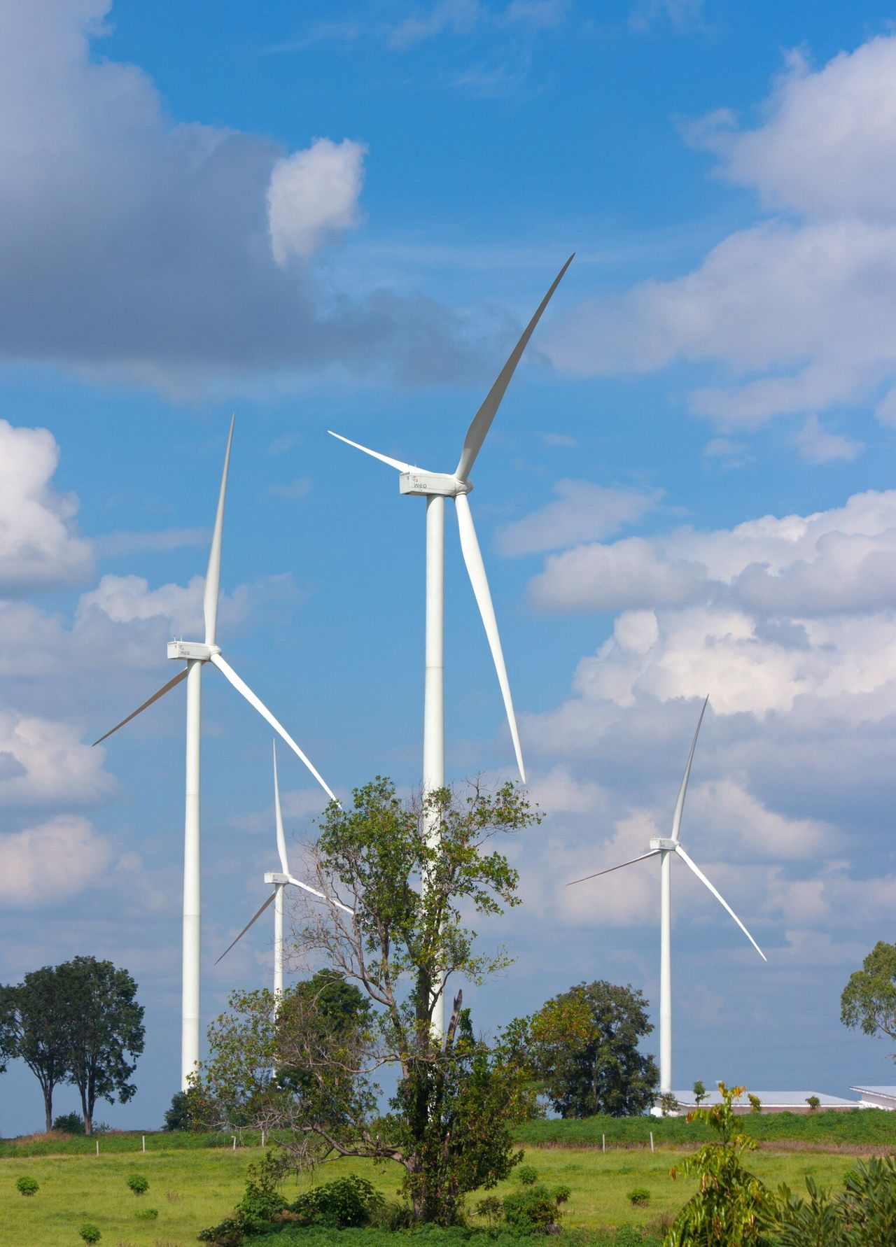 Wind Turbine Environmental Conservation Alternative Energy Wind Power Fuel And Power Generation Renewable Energy Windmill Electricity  Rural Scene Environmental Issues Industrial Windmill Sky No People Technology Nature Cloud - Sky Turbine Field Built Structure Sustainable Resources Ecology Eco Industry Industrial Wind