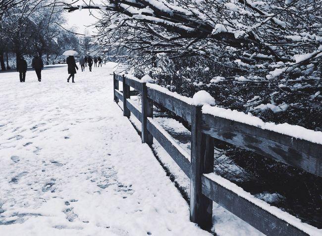 Nieve Snow ❄ Lleida En B&n La Mitjana