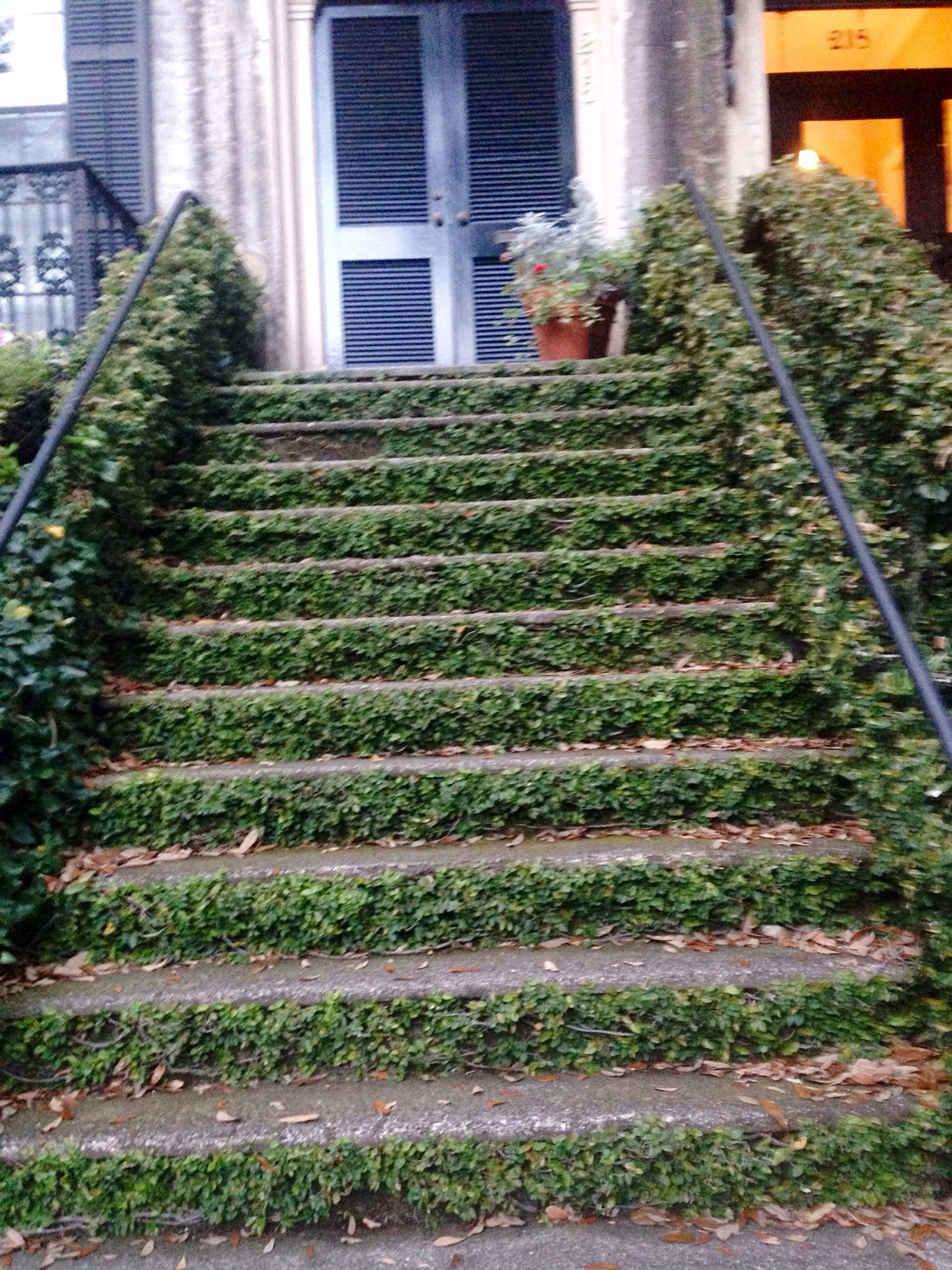 steps, architecture, built structure, building exterior, the way forward, steps and staircases, staircase, diminishing perspective, transportation, railing, vanishing point, day, outdoors, building, railroad track, no people, sunlight, house, plant, leading