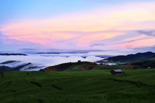 Papongpiang Chiang Mai | Thailand Mae Jam Rice Terraces Naturelovers Nature Photography