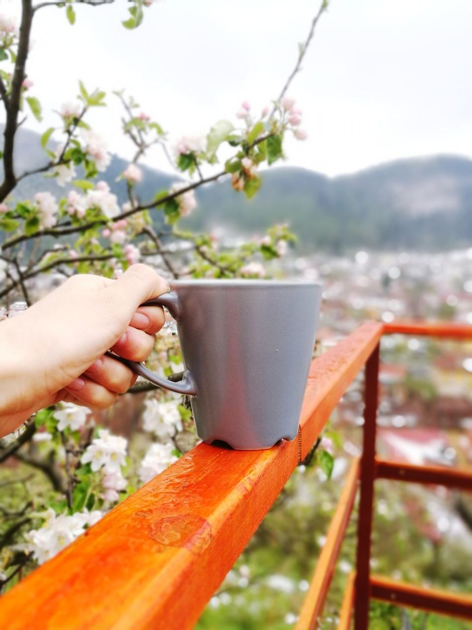 Outdoors Holding Selective Focus Mountain Landscape Mountains And Valleys Coffee Mug Coffee Coffee Time Morning View Blossom Tree Blossom Blossoming  Mountains And Sky Citymountains