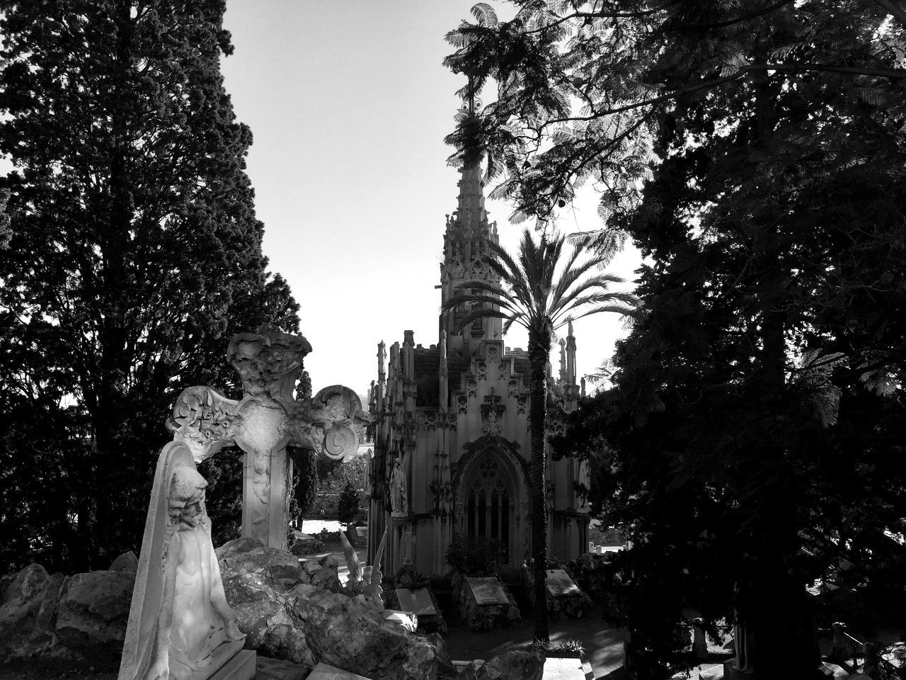 Architecture Barcelona Bcn Cementiri Cementiri De Montjuic Cemetery City Grave Graveyard Local Montjuic Nature Palm Palm Tree Park SPAIN Statue Stone Thomb