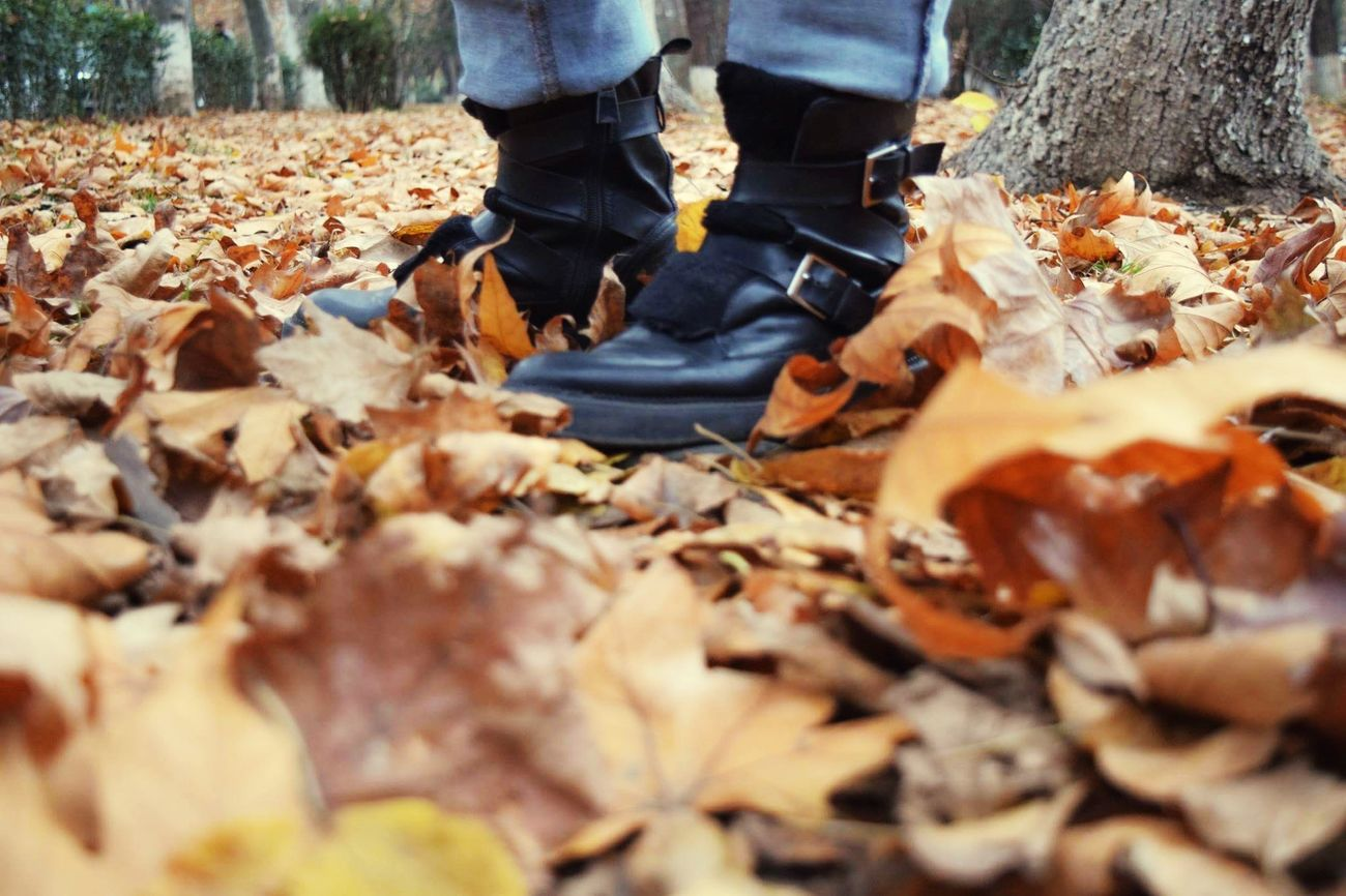 Autumn Leaves Nature Footwear Boots Beautiful Beauty