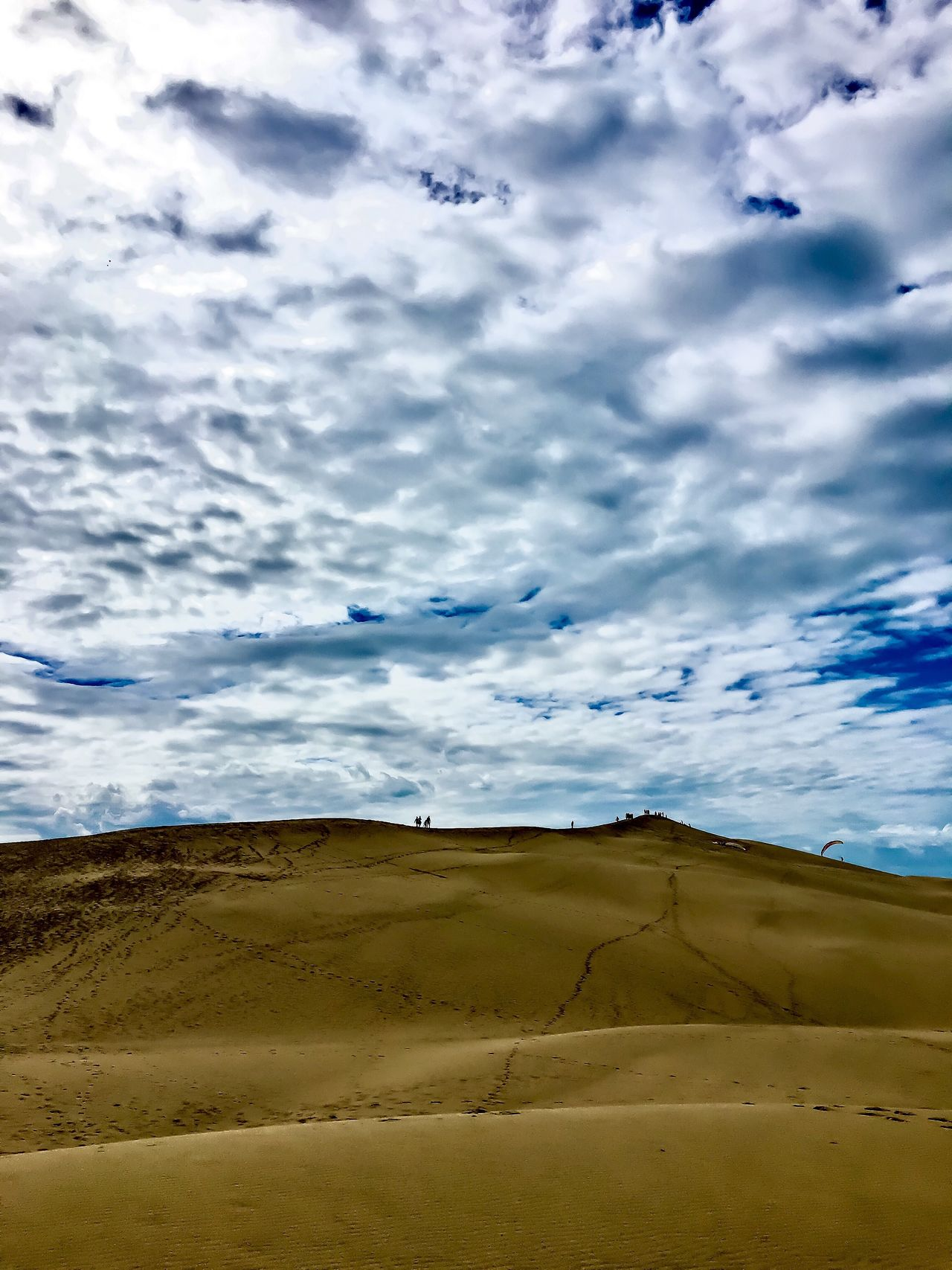 Highest Dune of Europe Dune Du Pyla France Sky Landscape Cloud - Sky Beauty In Nature Tranquil Scene Sand Sand Dune Travel Destinations Outdoors Nature Sunday