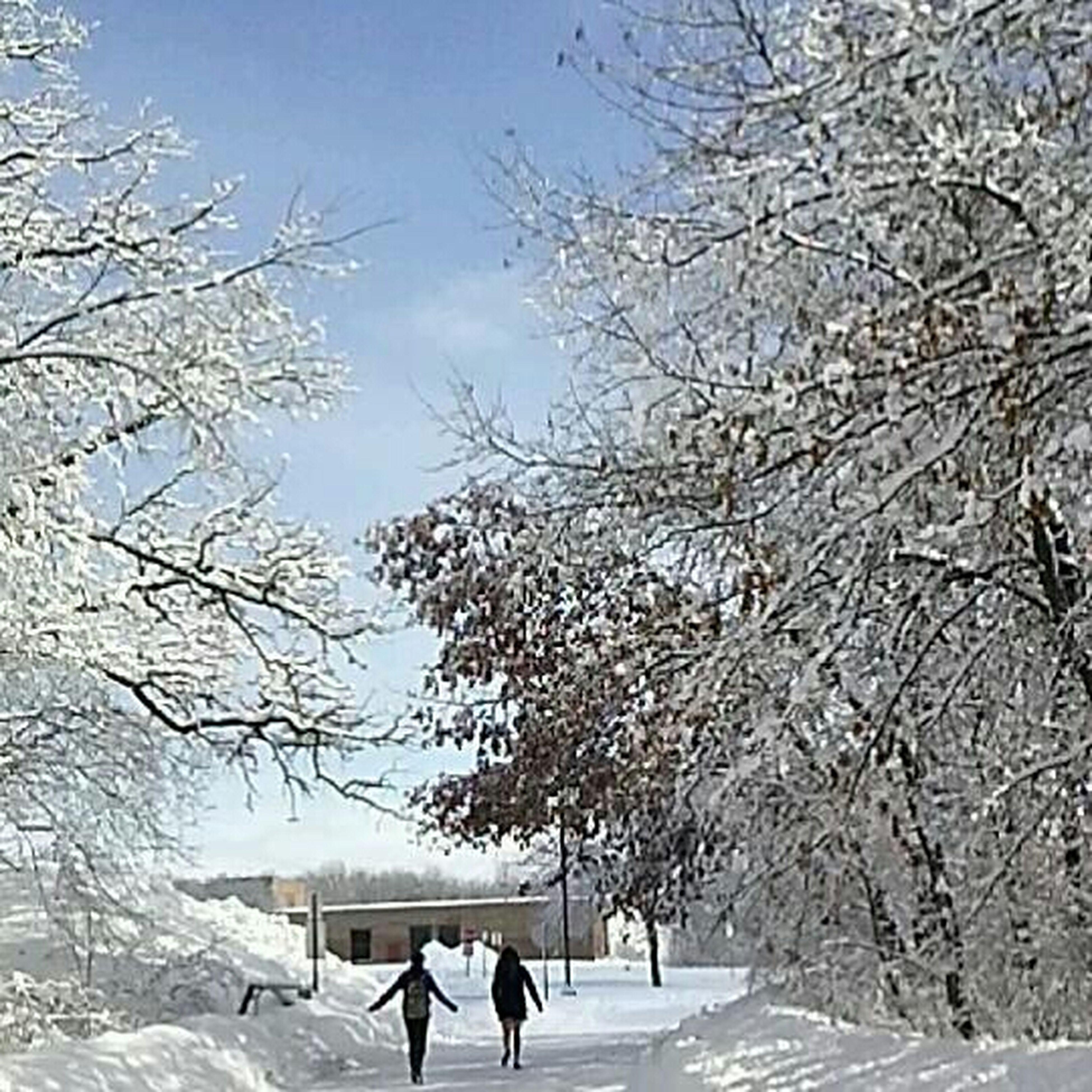 Winter Popular Landscape Clouds And Sky