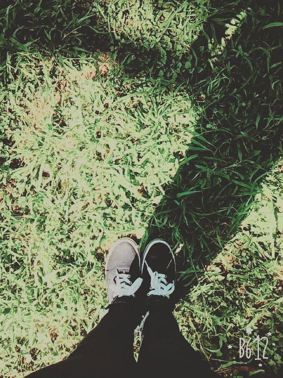 School ✌ Horalibre CBTis74 Hi! Green