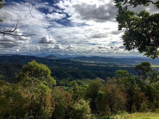 🍃🏞Orileys Hills Mountains Trees Bush Cloudformations Bluesky Spectacularview QLD Australia Daytrip Goodcompany LamingtonNationalPark