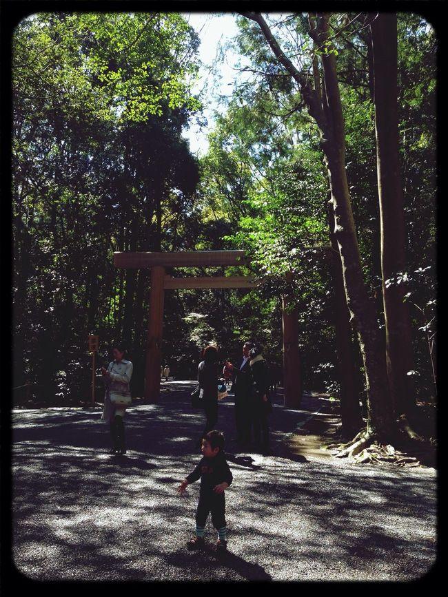 Japan Shrine Worship Good Morning