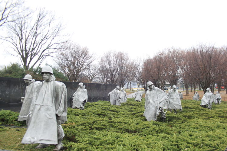 America History Grass Area History Memorial Memories Men Outdoors Park - Man Made Space Place Of Burial Standing The Past War Washinton D.C