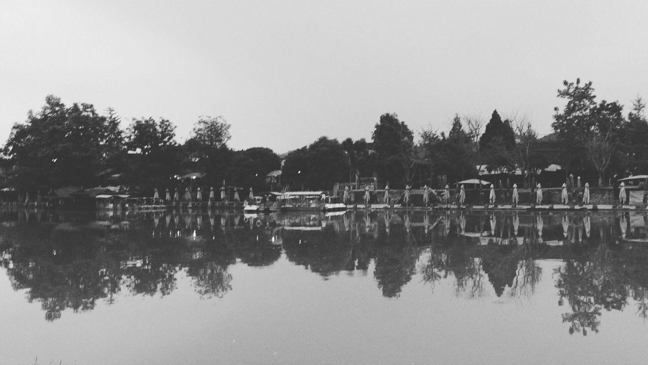 美丽宁静的小镇 Tree Water