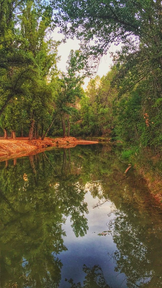 And the Water running calmly Golden Hour In Action Let's Do It Chic! EyeEm Nature Lover Water Reflections Open Edit Respect For The Good Taste EyeEm Best Shots Nature On Your Doorstep Riverside Not All In The Life Is A Beach