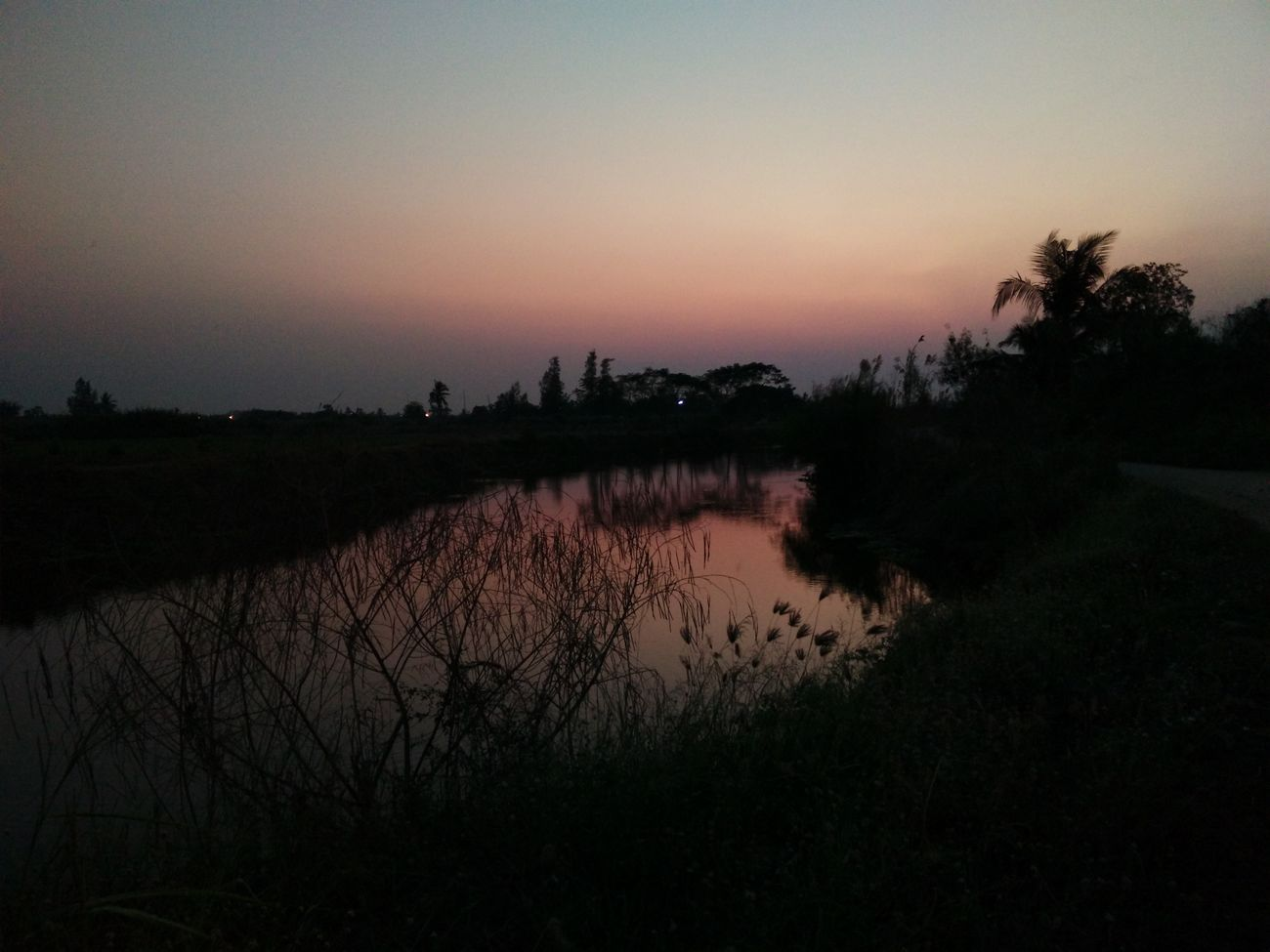 Sunset Nature Landscape Sky Water Outdoors Arrival Agriculture Growth RASTA Rastafari Beauty In Nature Nature