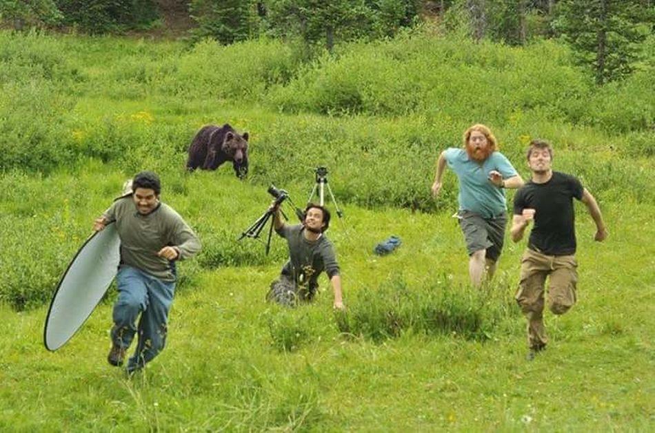 Live live live.... Photogeaphy Life Bear cool....