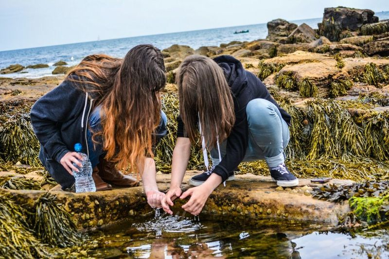My kids exploring the rockpools.... Rock Pooling Eye4photography  Taking Photos Family Fun Time for you @cheekyvimto