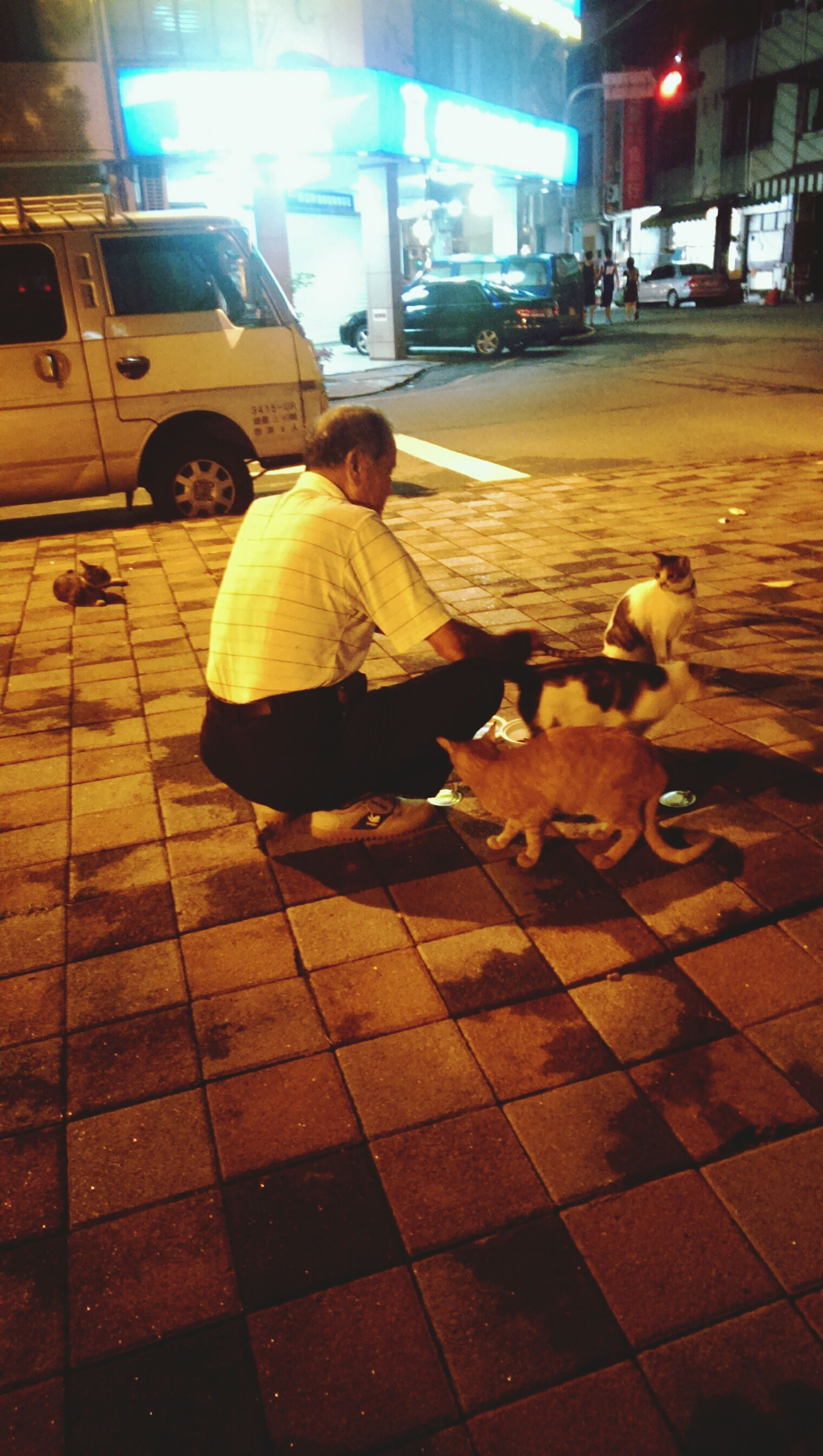 street, full length, animal themes, lifestyles, night, leisure activity, sidewalk, pets, cobblestone, building exterior, men, person, walking, dog, incidental people, paving stone, rear view, casual clothing