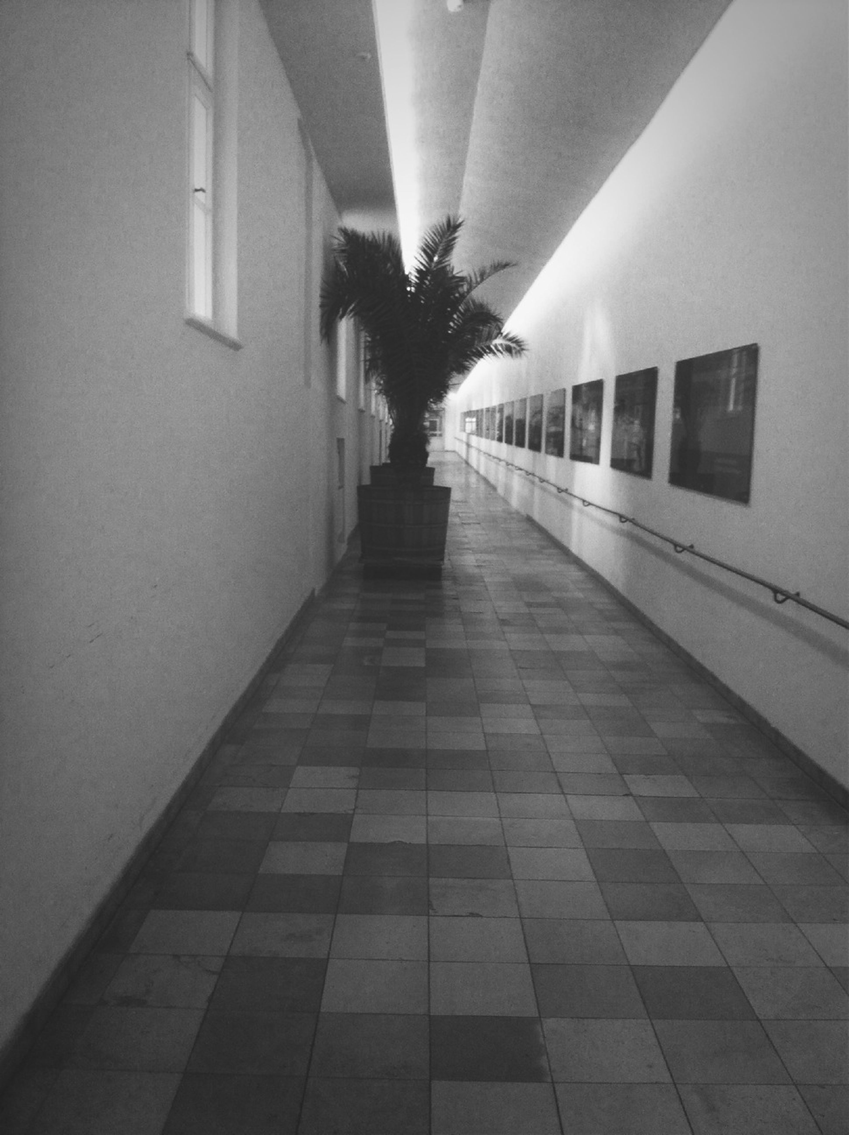 architecture, built structure, illuminated, the way forward, tiled floor, indoors, corridor, flooring, lighting equipment, building, diminishing perspective, ceiling, building exterior, wall - building feature, empty, walkway, tile, no people, sunlight, absence