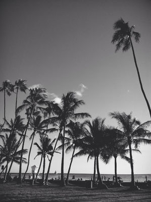 blackandwhite at Kaimana Beach Park by me_lv