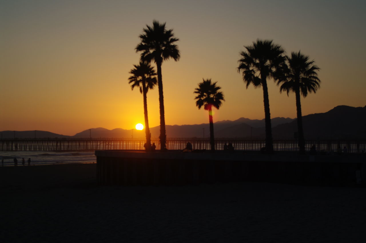 California Sunset Beach Beauty In Nature Nature No People Outdoors Palm Tree Scenics Sea Silhouette Sky Sommergefühle Sun Sunset Tranquil Scene Tranquility Travel Destinations Tree Water
