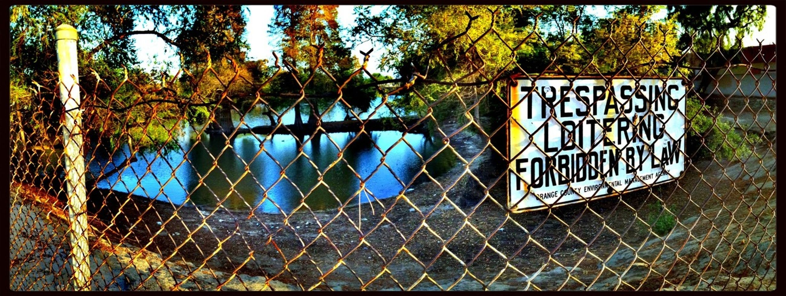 tree, text, western script, built structure, fence, transfer print, communication, architecture, blue, day, railing, protection, safety, sign, growth, chainlink fence, no people, sunlight, branch, outdoors