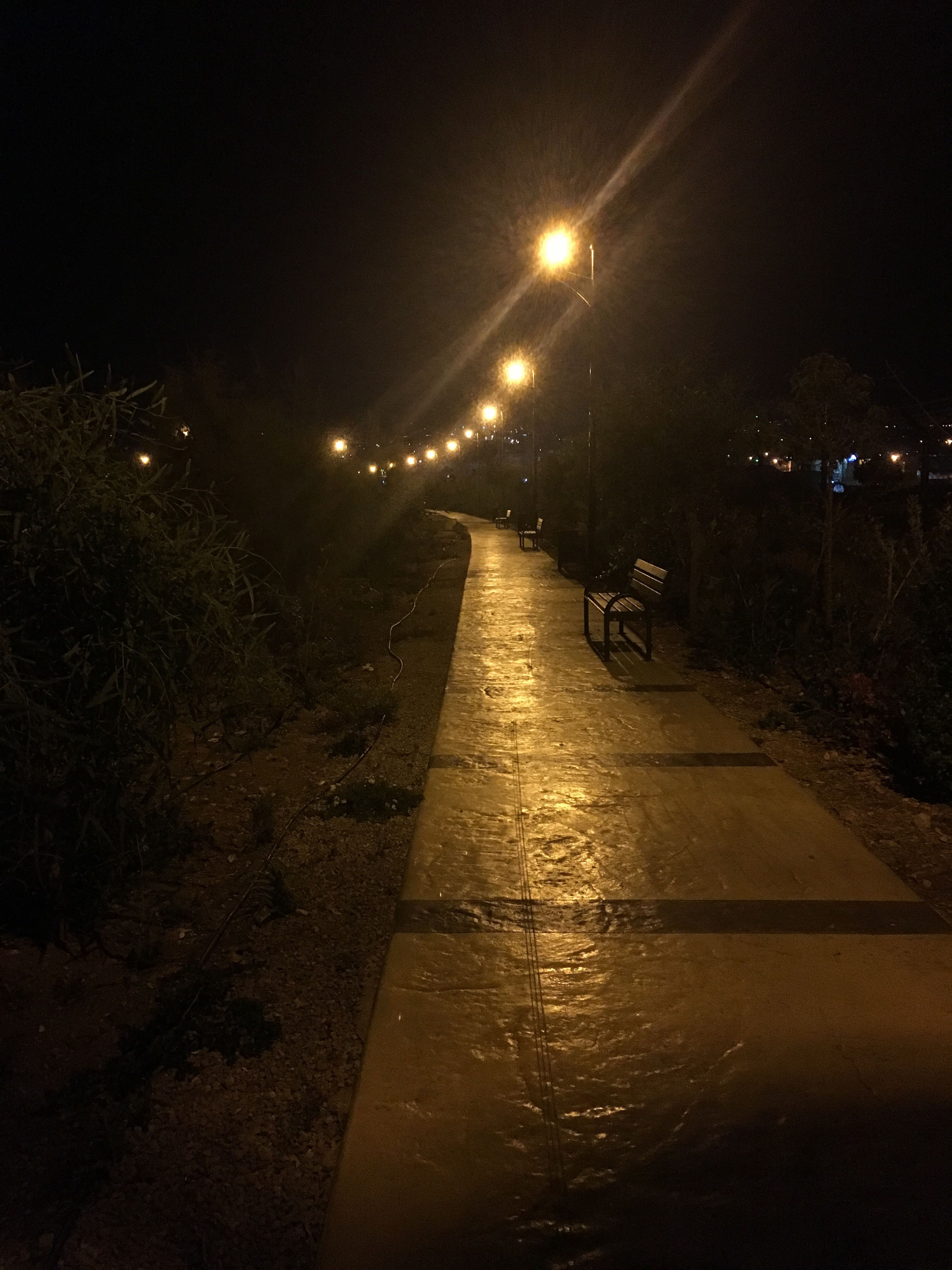 Night walk in Saida's park..