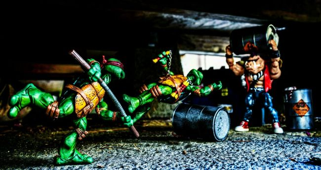 Outdoor Photography Outdoor Toy Photography Toy Photography Necatoys Teenage Mutant Ninja Turtles  Tmnt Playmates