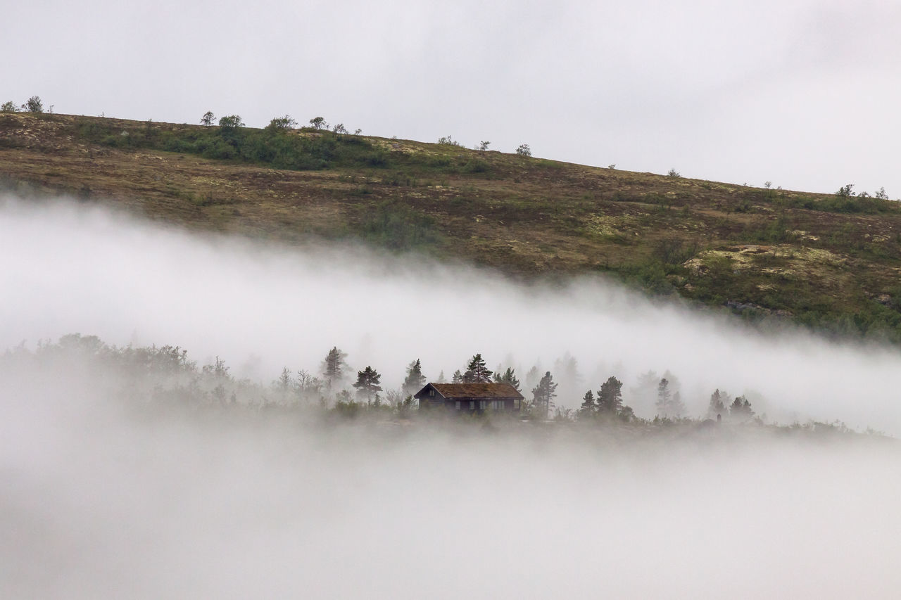Beauty In Nature Cloud Cottage Day Fog Foggy Grass Hardangervidda House Landscape Loneliness Lonely Mountain Nature Nature No People Norway Outdoors Scenics Sky Tree Weather