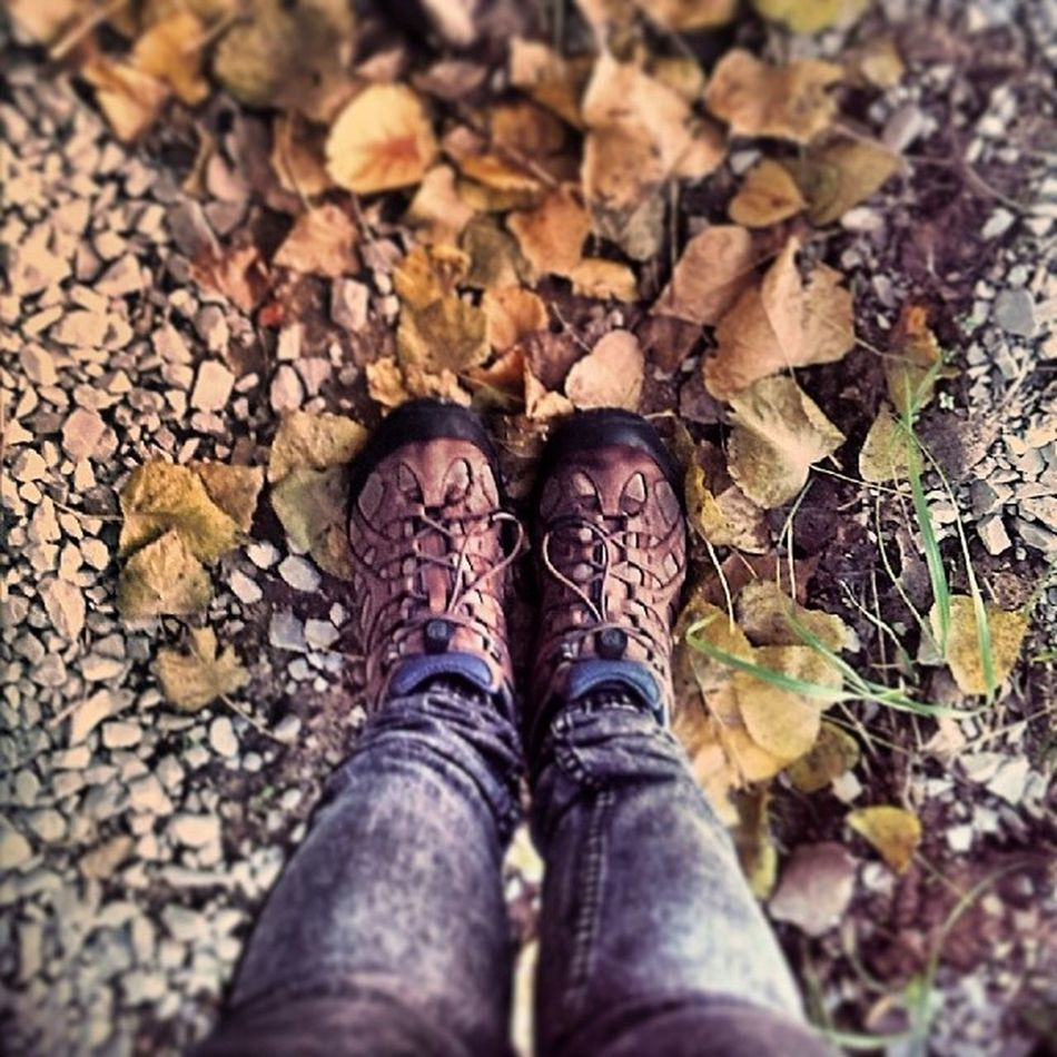 Adoro o Outono Autumn Leeves Yellow Snikers merrell cold jeans me legs beautiful lovely cute girl