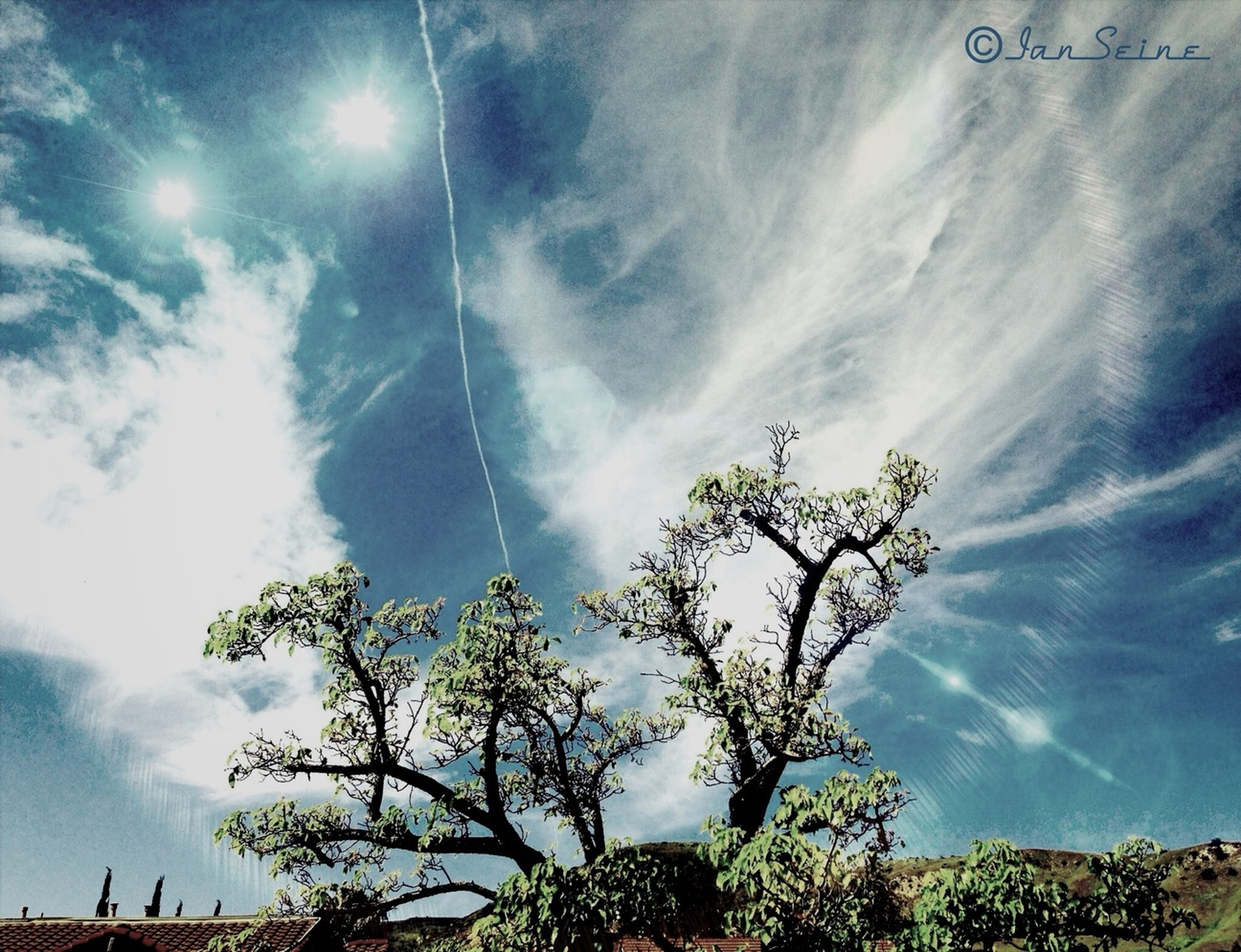 low angle view, sky, tree, cloud - sky, cloudy, nature, growth, cloud, branch, tranquility, beauty in nature, blue, day, outdoors, no people, sunlight, scenics, high section, street light, treetop