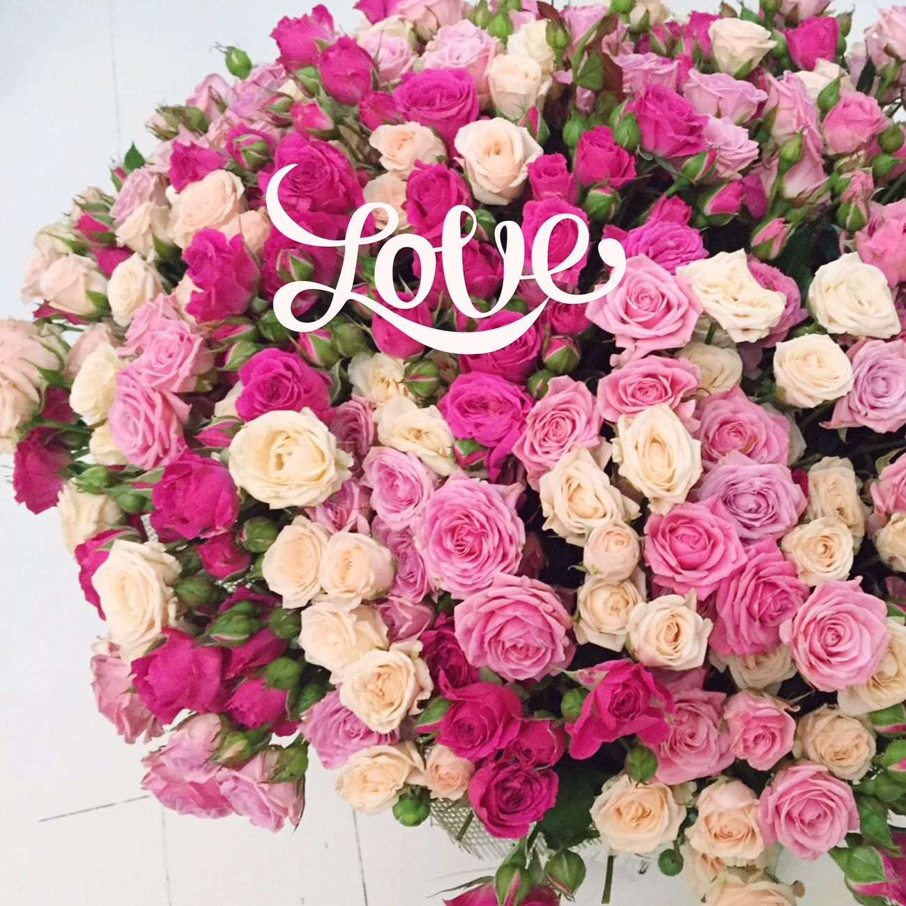 Flowers Favoriteflower Flowerslovers Love Follow us💖🎀😊