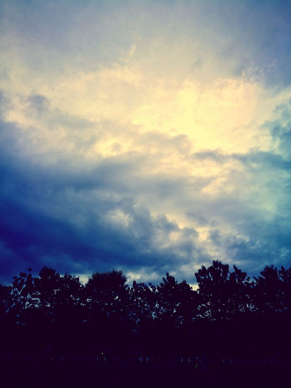 Sky Sunset Silhouette Tree Nature Leicacamera HuaweiP9 Scenics Beauty In Nature